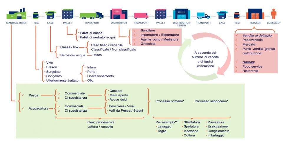 Tracciabilità del pesce: orientarsi nel sistema normativo
